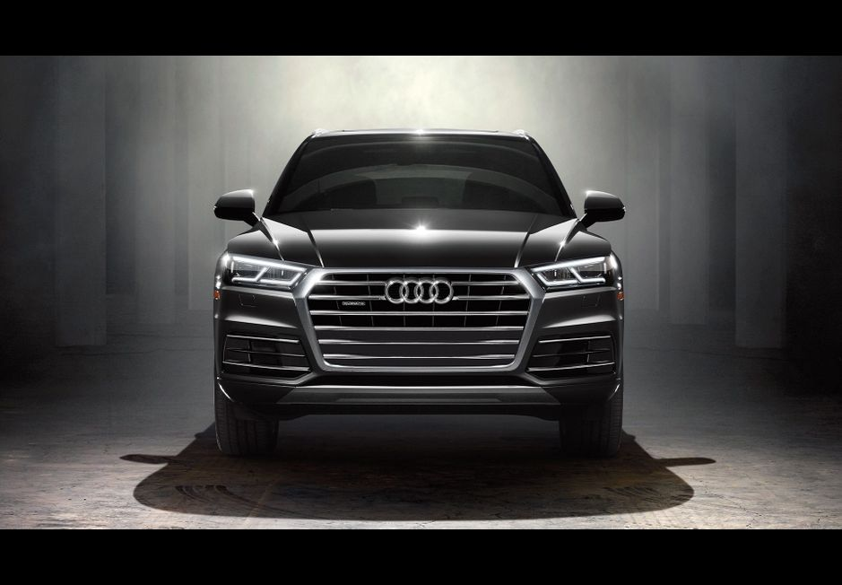 Audi Q5 Named Best Car for Dog Owners